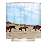 Wild Horses Of Corolla - Outer Banks Obx Shower Curtain