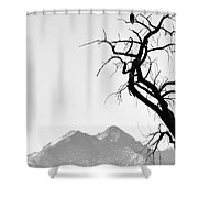 Wild Kingdom Shower Curtain