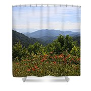 Wild Lilies With A Mountain View Shower Curtain