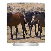Wild Mares-signed-#0271 Shower Curtain