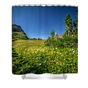 Wild Mountain Flowers Glacier National Park   Shower Curtain