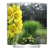 Wild Mullein Shower Curtain