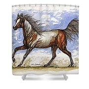 Wild Mustang Shower Curtain