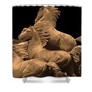 Wild Mustang Statue I I I Shower Curtain