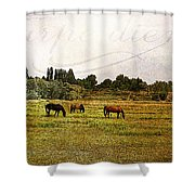 Wild Mustangs Carpe Diem Shower Curtain