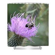 Wild Nectar Shower Curtain