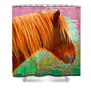 Wild Pony Abstract Shower Curtain