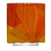 Wild Poppy Shower Curtain