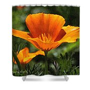 Wild Poppy On The Loose Shower Curtain