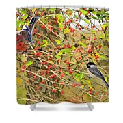 Wild Red Berrie Bush With Birds - Digital Paint Shower Curtain