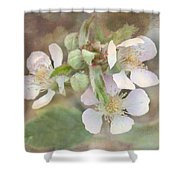 Wild Roses - Digital Paint Shower Curtain