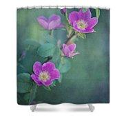 Wild Roses Shower Curtain by Priska Wettstein