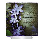 Wild Star Flowers And Innocence  Shower Curtain
