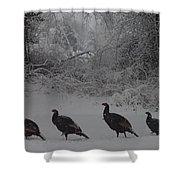 Wild Turkey Winter Shower Curtain