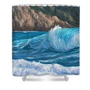 Wild Waves Shower Curtain