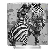 Wild Zebras Shower Curtain