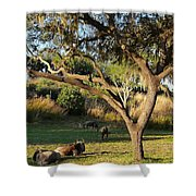Wildebeest Shower Curtain