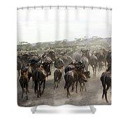 Wildebeest Migration  Shower Curtain