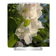 Wildf Apple Blossoms Shower Curtain