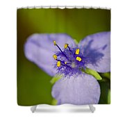 Wildflower 1 - Botanical Photography By Sharon Cummings Shower Curtain