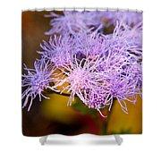 Wildflower-1 Shower Curtain