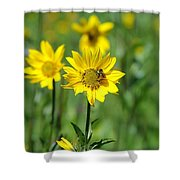 Wildflower Bee Shower Curtain
