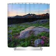 Wildflower Dawning Shower Curtain