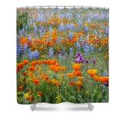 Wildflower Dreamin Shower Curtain