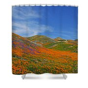 Wildflower Extravaganza  Shower Curtain