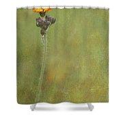 Wildflower Shower Curtain