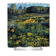 Wildflower Hillside Shower Curtain