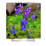 Wildflower Larkspur Shower Curtain