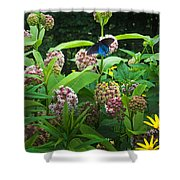 Wildflower Meadow Shower Curtain