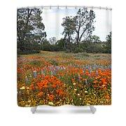 Wildflower Wonderland 2 Shower Curtain