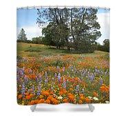 Wildflower Wonderland 3 Shower Curtain