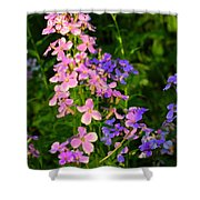 Wildflower Woods Shower Curtain