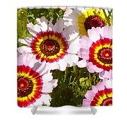 Wildflowerd Wide 1 Shower Curtain