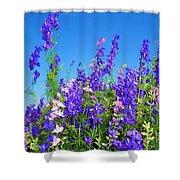 Wildflowers #11 Shower Curtain