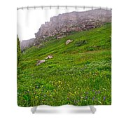 Wildflowers And Mountainous Bluffs At Point Amour In Labrador Shower Curtain