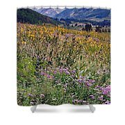 Wildflowers And Mountains  Shower Curtain