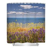 Wildflowers And Ocean Shower Curtain