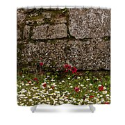 Wildflowers And Olympia Ruins   #9508 Shower Curtain