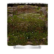 Wildflowers And Olympia Ruins   #9594 Shower Curtain