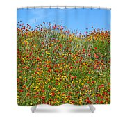 Wildflowers And Sky 2am-110541 Shower Curtain