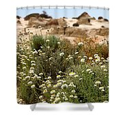 Wildflowers At Mungo National Park Shower Curtain