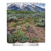 Wildflowers Bloom Below Teton Mountain  Range Shower Curtain