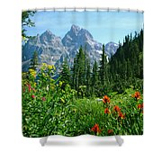 1m9372-v-wildflowers In Cascade Canyon, Tetons Shower Curtain