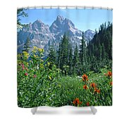 1m9371-h-wildflowers In Cascade Canyon, Tetons Shower Curtain