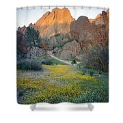 1b6430 Wildflowers In Pinnacles National Park Shower Curtain