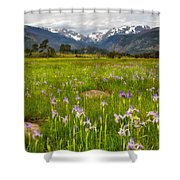 Wildflowers In Rocky Mountain National Park Shower Curtain